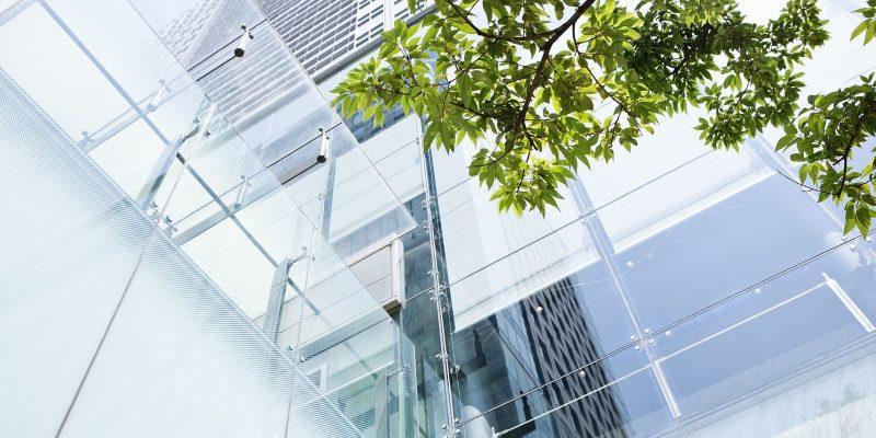 Entenda o que é a sigla ESG e sua importância na empresa